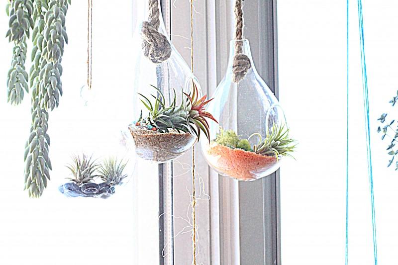 hangingplanters2