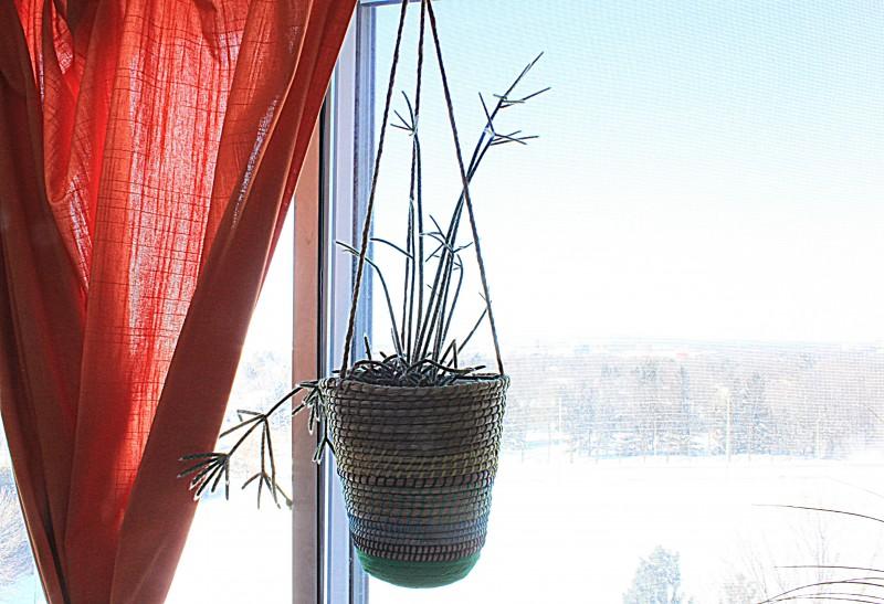 hangingplanters3