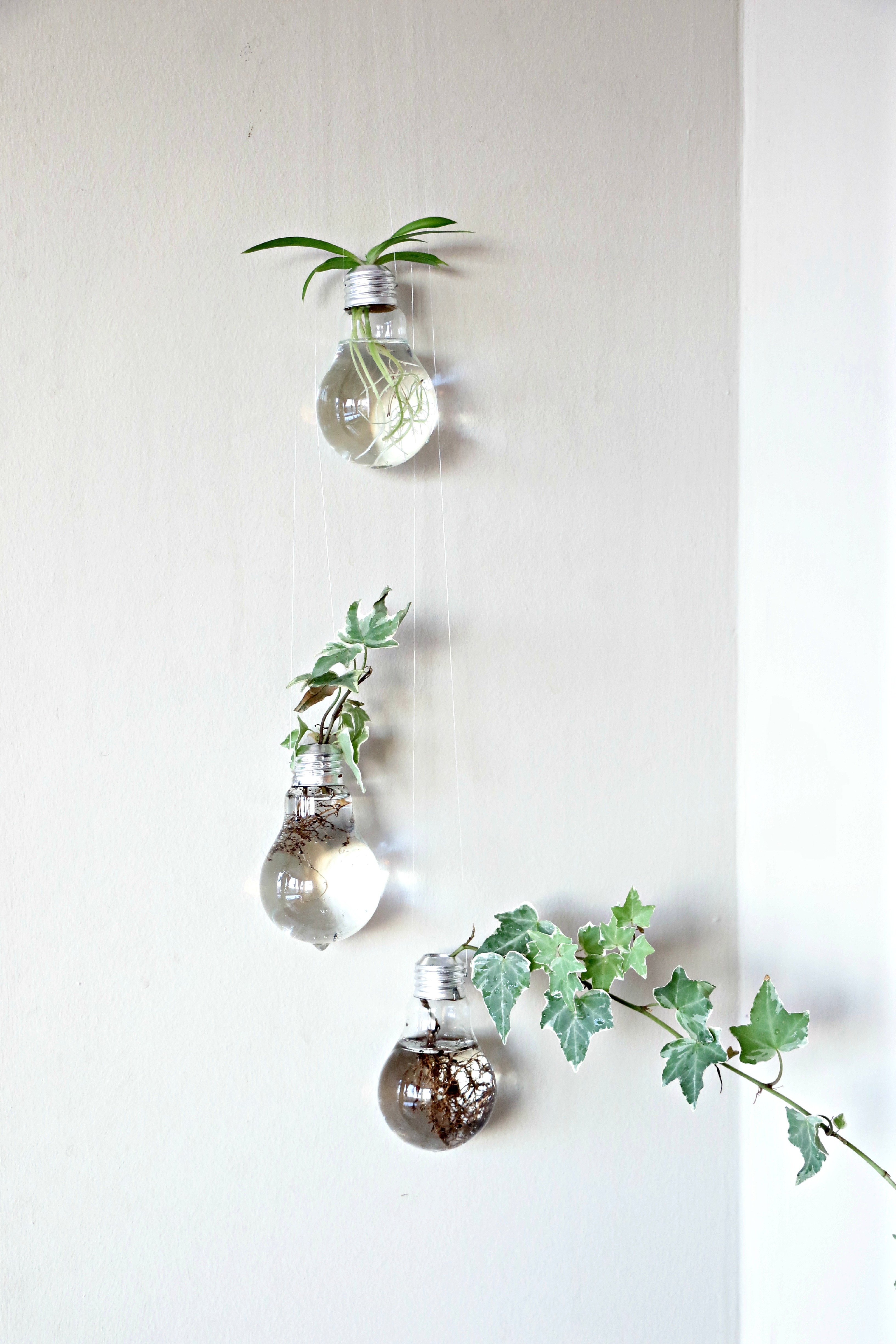 upcycled-light-bulb-planter