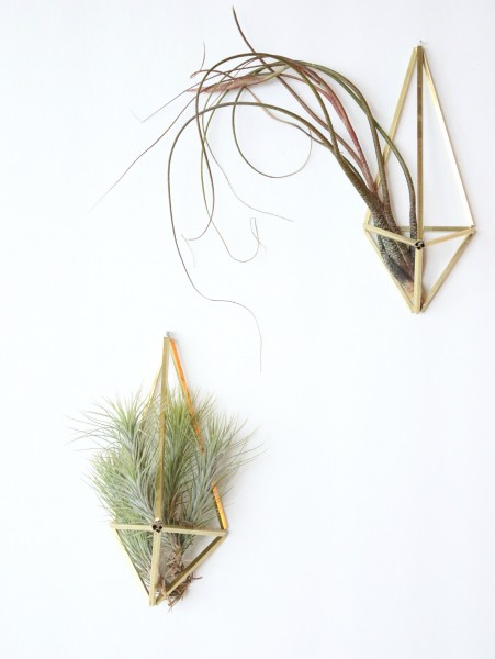 Himmeli Airplant Holder