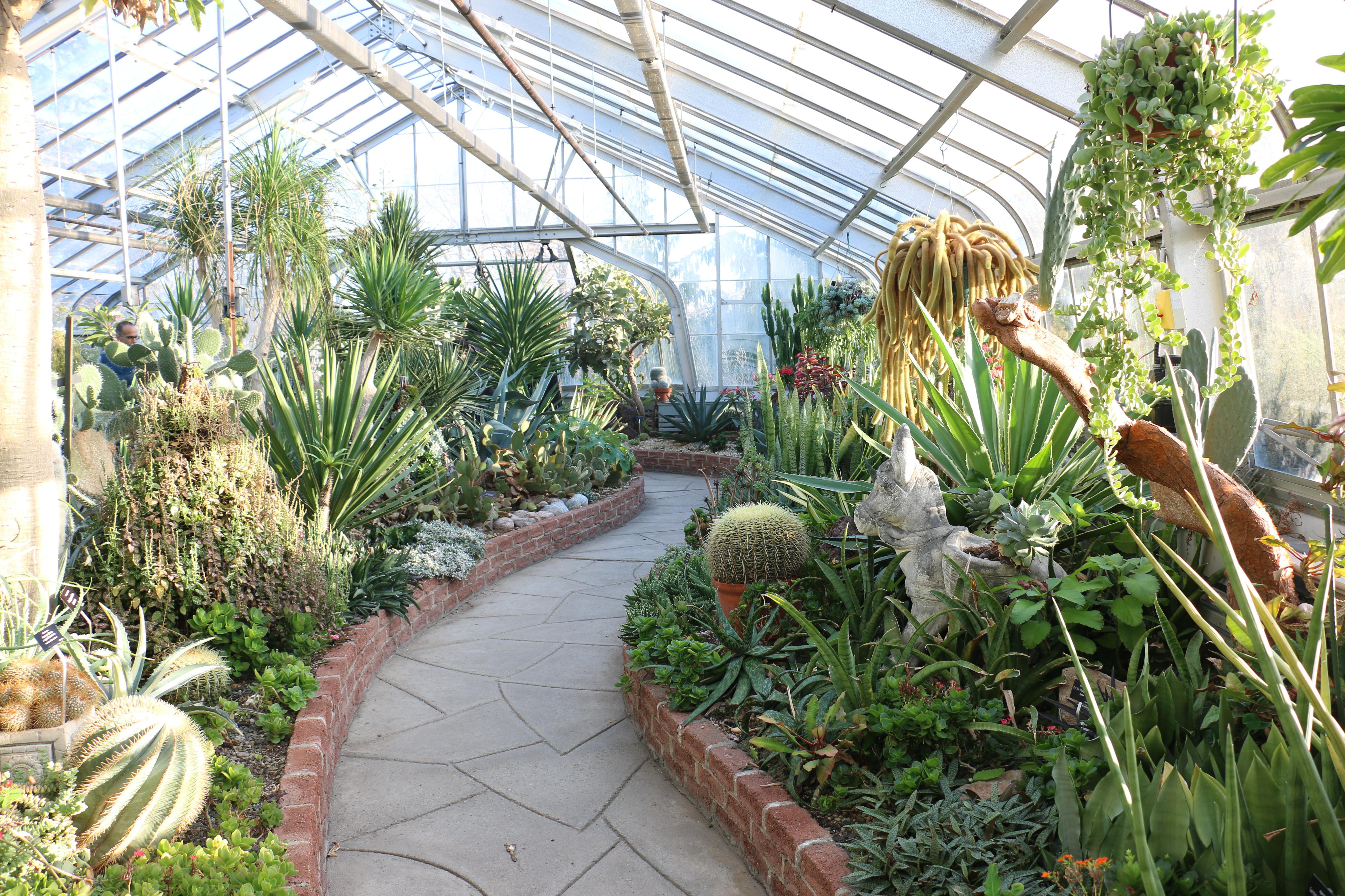 a-trip-to-the-centennial-park-conservatory