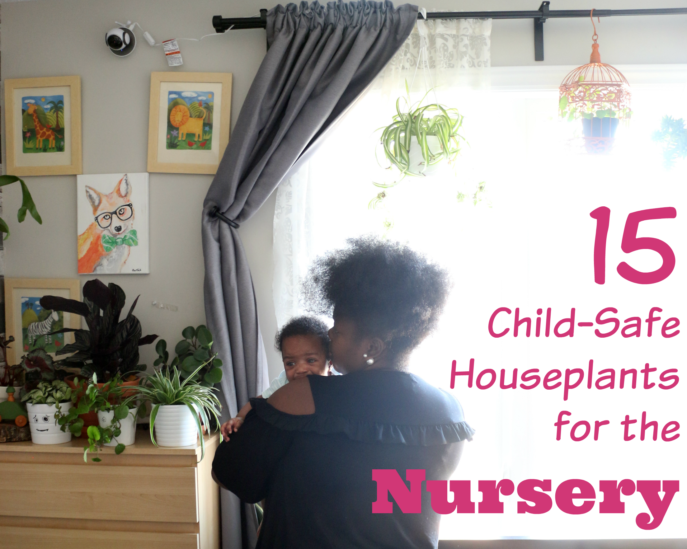 15 Children-Safe House Plants For the Nursery