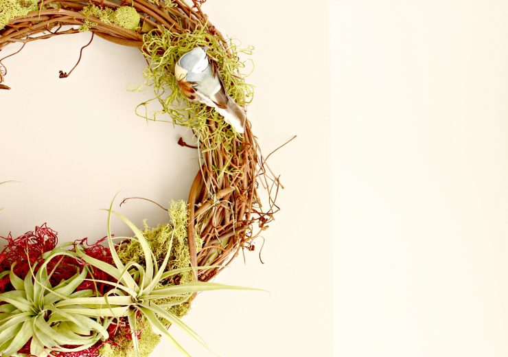 making-an-airplant-wreath