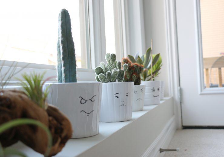 urban-jungle-bloggers-plants-and-art