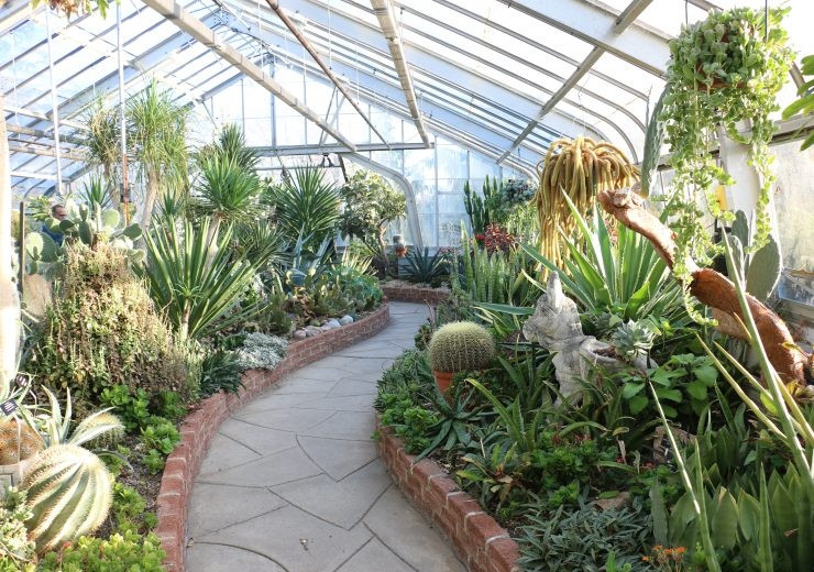 a-trip-to-the-centennial-park-conservatory